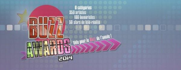 Best Artiste Masculin 2014