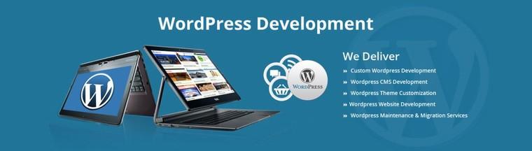 Hire Wordpress Development Developer Dubai Abu Dhabi UAE