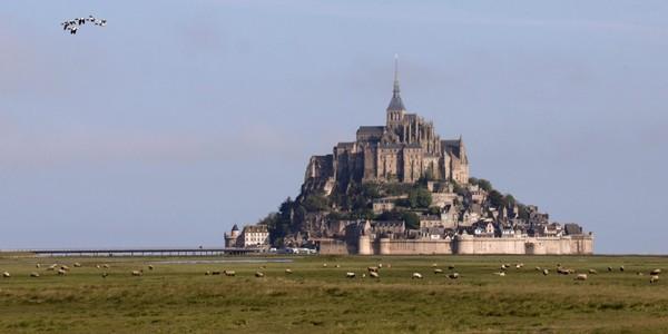 Un cimetière du Moyen-Age découvert au Mont Saint-Michel