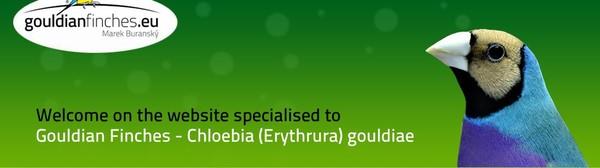 Gouldian genetics forecaster, offspring calculation - gouldianfinches.eu