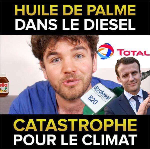 Huile de palme dans le diesel, une catastrophe pour le climat - Osons Causer