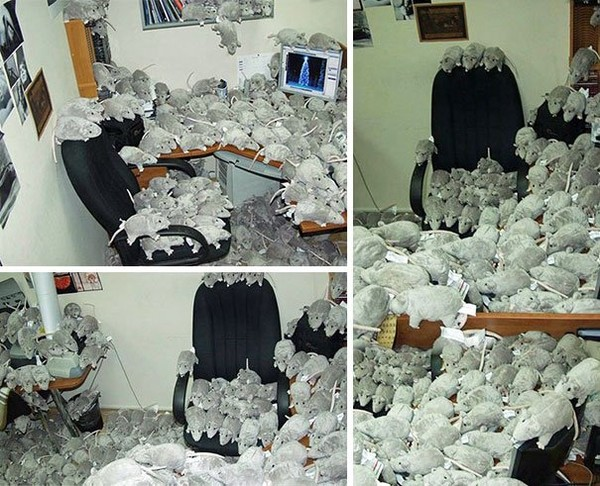http://www.niceplacevisit.com/amazing-awesome-tips-best-office-april-fools-pranks-2/