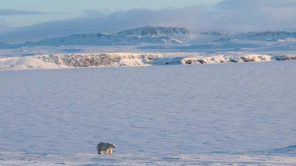 Un record absolu de chaleur battu en Sibérie