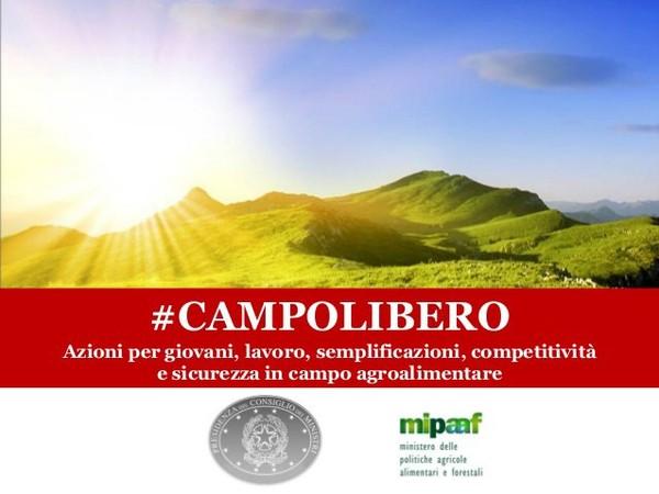 AgevoBLOG - La piazza dei finanziamenti pubblici: #campolibero: previste dal Decreto Crescita agevolazioni per gli agricoltori giovani e innovativi e per le reti d'impresa