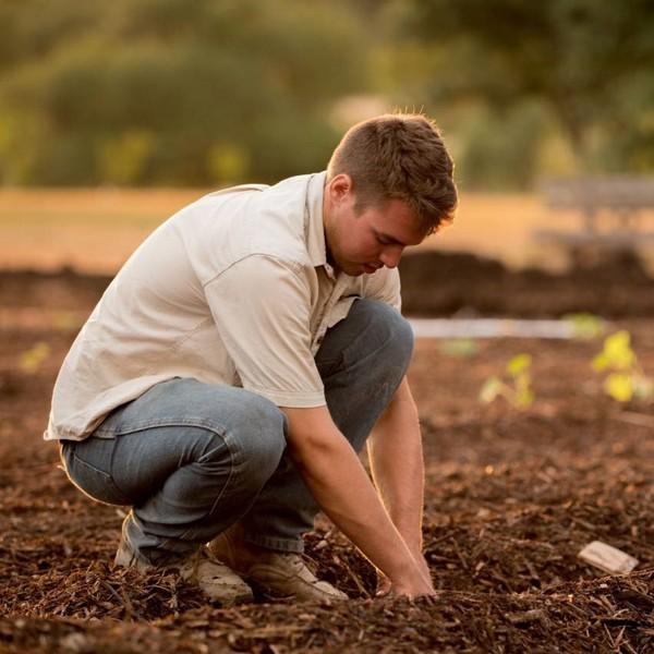 Agriculture bio dans le monde : quels sont les pays les plus dynamiques