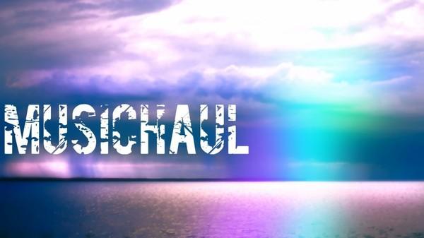 Blog de MusicHaul - Nicolas Pavée