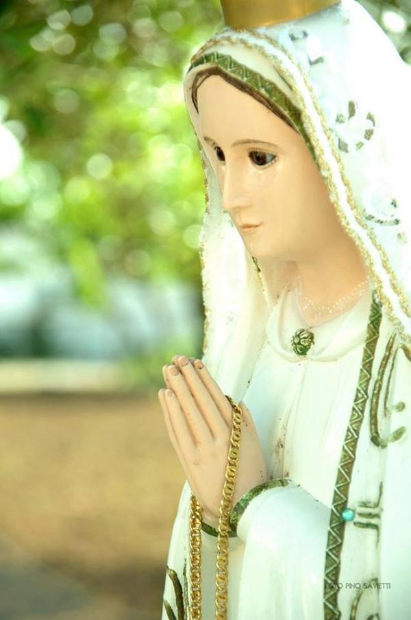 MESSAGE & APPARITION PUBLIQUE DE LA MADONE DE LA RÉCONCILIATION REÇU PAR MARIO D'IGNAZIO LE 5 AVRIL 2017* Vous n'êtes pas seuls dans le voyage de la vie : Moi et Jésus sommes auprès de vous*