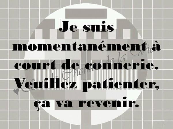 Le Parti Populaire dénonce les nouvelles pitreries de Laurent Louis contre le dépôt de ses listes électorales