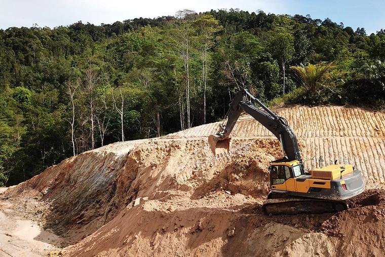 Guyane: une centrale à hydrogène va détruire 50 ha de forêt amazonienne avec la complicité de l'État français