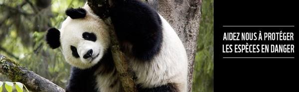 Débat énergie : Le WWF France fait une proposition innovante pour financer la transition énergétique / Actualités / S'informer - WWF France