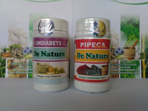 Obat Diabetes | Pipeca & Undiabets | Baikyaku-used.info