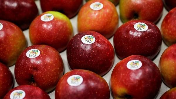 Nourriture contaminée, origine douteuse, faux bio, Foodwatch dénonce la fraude alimentaire et demande aux autorités d'agir