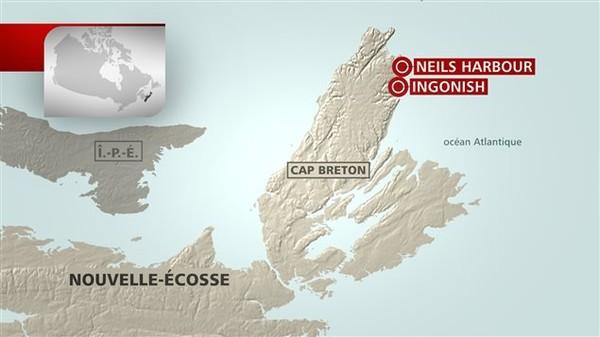 Deux personnes ont dû être transportées par hélicoptère à l'hôpital régional de Sydney, en Nouvelle-Écosse, à la suite d'un accident d'autocar survenu au Cap-Breton. L'une de ces personne...