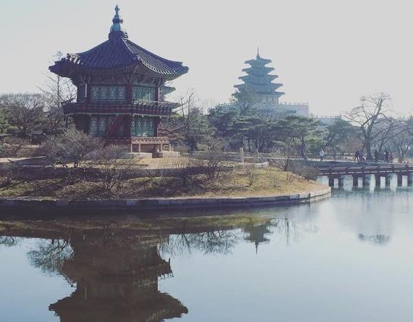 Ma vie d'expat en Corée du Sud | Contrepoints