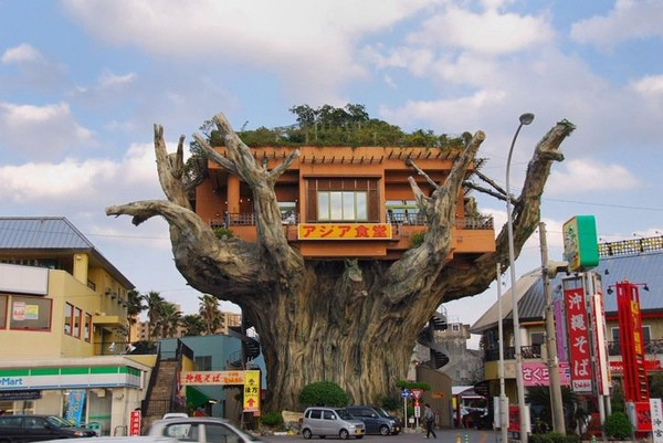 http://www.niceplacevisit.com/amazing-stunning-banyan-restaurant/