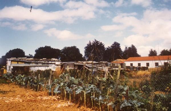 La Rochelle-Mireuil-Les Jardins Familiaux