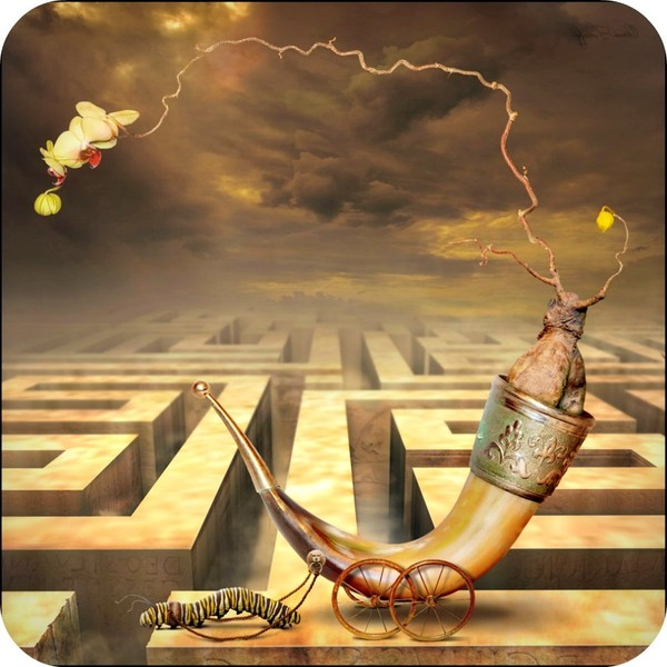 Everyone has his Own Hidden Talent, so do Not Waste it. - Daily Poetry and Stories Portal   Easy Branches