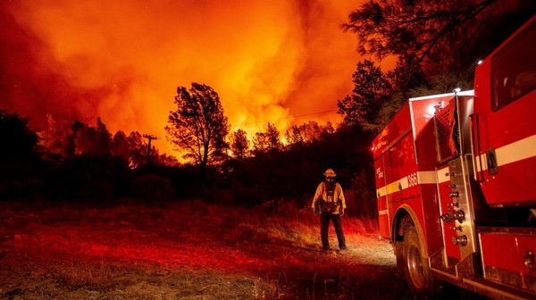 Incendies en Californie : pourquoi feux de forêt et réchauffement climatique forment un cercle vicieux