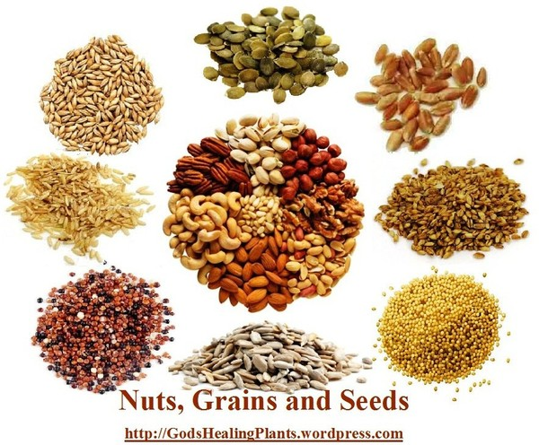 NUTRIENT CHART OF NUTS, GRAINS & SEEDS