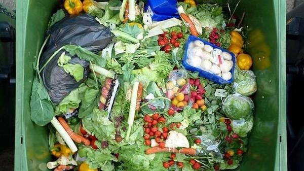 Les députés interdisent à la grande distribution de jeter la nourriture