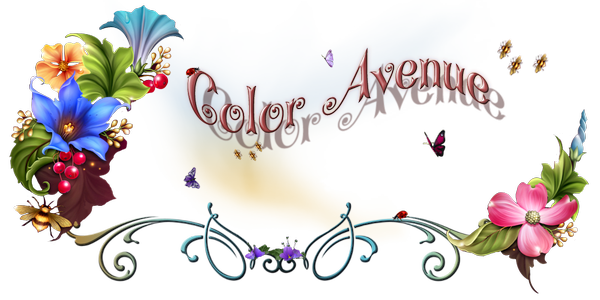 Color'Avenue Graphisme�